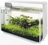 Superfish Home 60_