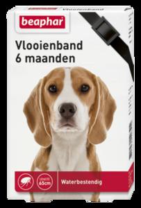 Vlooienband hond zwart