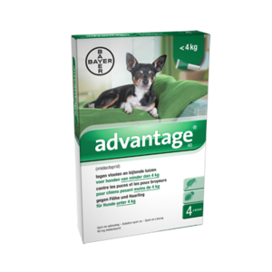 Advantage Hond 40 4 Pipetten