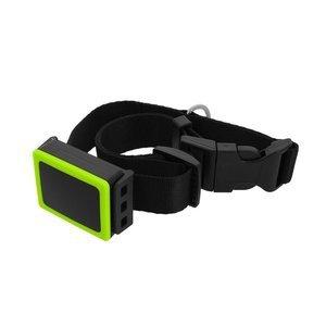 Weenect Pets GPS Collar